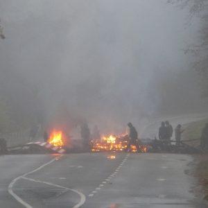 Brandbarrikaden im Hambacher Forst