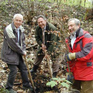 SPD pflanzt Rotbuche im Brühler Wald: v.l.n.r.: Hans Krings, Hardy Fuß,Hans Günter Eilenberger